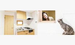 ชาวญี่ปุ่นออกแบบบ้านสไตล์ใหม่สำหรับทาสแมวโดยเฉพาะ