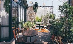 จัดสวนอย่างมีสไตล์ให้เหมาะกับบ้านในเมือง