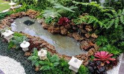 """ไปชม """"สวนบ่อปลา"""" บ่อน้ำน้อยๆ สวยงามเป็นธรรมชาติเหมือนบ่อน้ำในป่าของจริง"""