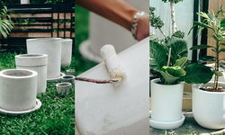 """DIY """"กระถางต้นไม้สีขาวสไตล์มินิมัล"""" ประหยัดงบ สวยงาม เหมาะกับทุกมุมในบ้าน"""