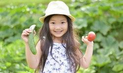 การปลูกผักร่วมกัน วิธีการที่คนญี่ปุ่นใช้เพิ่มผลผลิตผักและลดการใช้สารเคมี