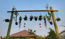 "DIY ""ราวแขวนดอกไม้จากไม้ไผ่"" สวยงามตรงใจ ประหยัดค่าใช้จ่าย"