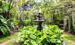 Tropical Garden เคล็ดลับการจัดสวนเมืองร้อนให้สวยเป็นธรรมชาติ