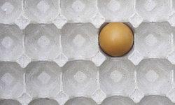 7 ทริครียูส นำถาดไข่เก่ากลับมาใช้ใหม่ได้อย่างสร้างสรรค์
