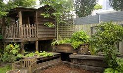 """จัดสวน """"อควาโปนิกส์"""" แบบเรียบง่ายในพื้นที่หลังบ้าน สร้างระบบปลูกพืชผสมผสานกับการเลี้ยงปลา"""