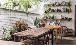 เคล็ดลับน่ารู้ ดูแลต้นไม้ในบ้านให้มีสุขภาพดี