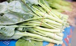วิธีเก็บผักคะน้าให้อยู่ได้นาน เขียว สด 2 สัปดาห์