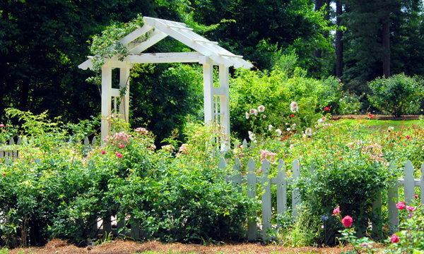 """10 สิ่งที่มีแล้ว """"สวน"""" สวย"""