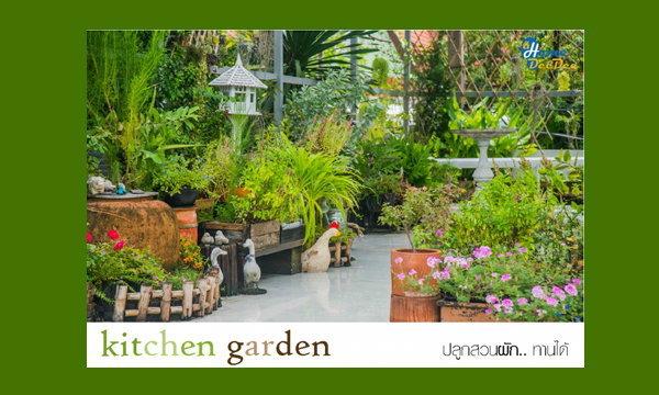 มาปลูกสวนผัก.. ทานได้กันเถอะ