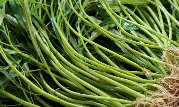 """ง่าย ๆ """"ปลูกผักบุ้งจีน"""" ทานเองที่บ้าน ประหยัดในยุคเศรษฐกิจไม่ดี"""