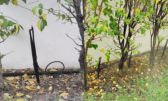DIY เดินท่อรดน้ำต้นไม้เองง่ายๆ เพียง 660 บาท