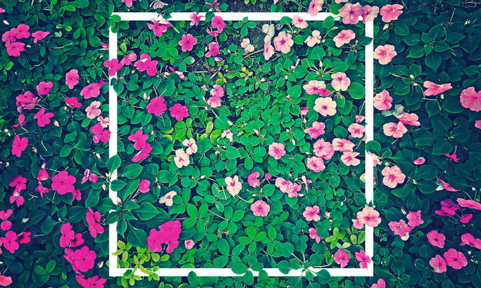 """5 เทคนิคจัดบ้านด้วยดอกไม้ โดยไม่จำเป็นต้องใช้ """"ดอกไม้จริง"""" เสมอไป"""