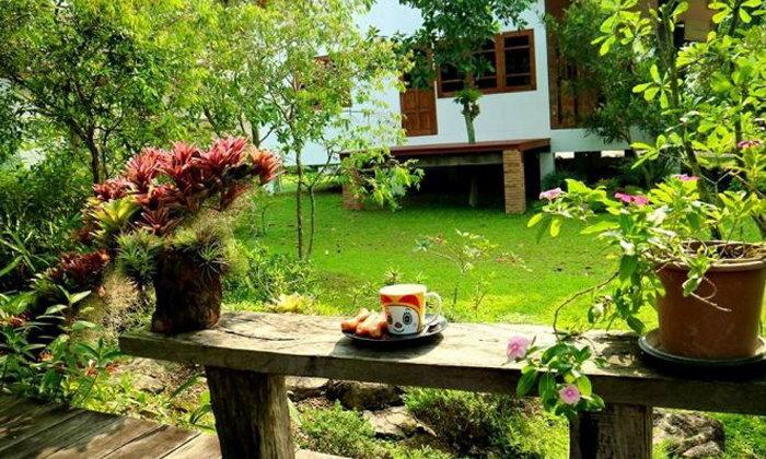 ไอเดียการจัดสวน พร้อมมุมกาแฟ จิบบรรยากาศคาเฟ่ในบ้าน By Prom Duangkai