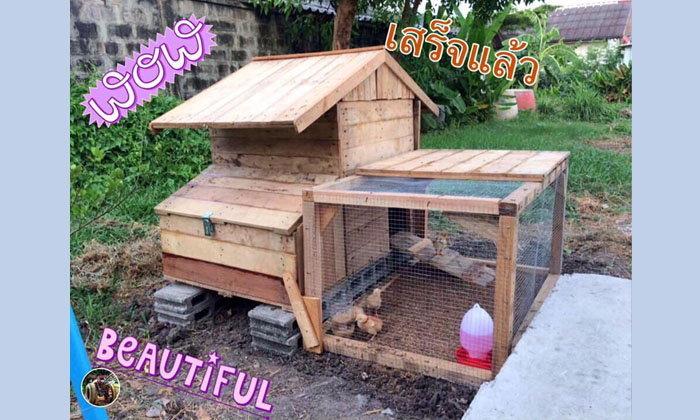"""แชร์ไอเดีย """"สร้างบ้านเล้าไก่ในสวนหลังบ้าน"""" งานนี้ทำเองไม่ง้อช่าง ใช้งบประมาณเพียง 787 บาทถ้วน"""