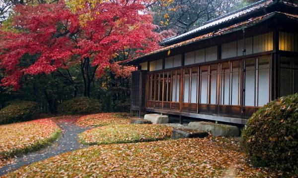 Slow House บ้านแบบญี่ปุ่นโบราณ สงบ ร่มรื่น