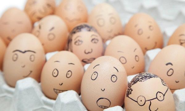 """สารพัดประโยชน์เกินคาดจาก """"ถาดใส่ไข่"""" ที่คนกินไข่อาจไม่เคยรู้"""