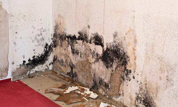 10 ของในบ้านที่อาจก่อให้เกิดอันตรายถึงชีวิต