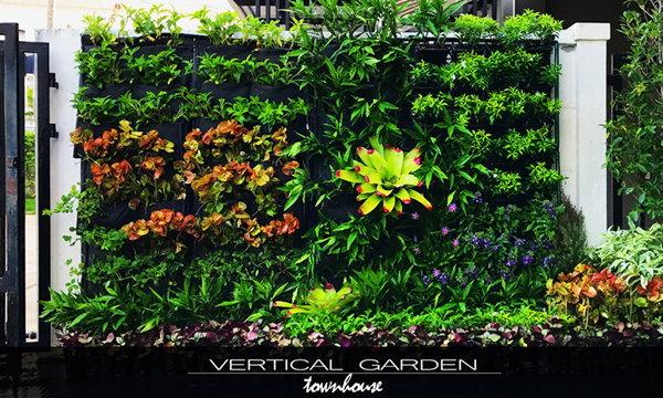 DIY. สวนแนวตั้ง (vertical garden) ในงบไม่เกิน 10,000 บาท