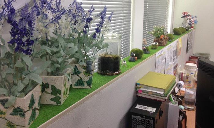 DIY จุดพักตาระหว่างทำงาน จัดสวนเขียวๆ และแมวบนโต๊ะทำงานสร้างความน่ารักมุ้งมิ้งให้ชีวิต