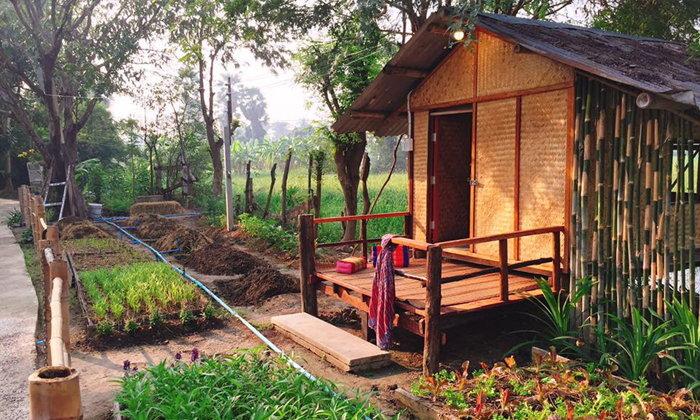 """เปลี่ยนสวนผสมผสานเป็น """"บ้านปันสุขเพชรบุรีรมย์"""" โฮมสเตย์ที่ให้เรากางมุ้งนอน อาบน้ำโอ่ง"""