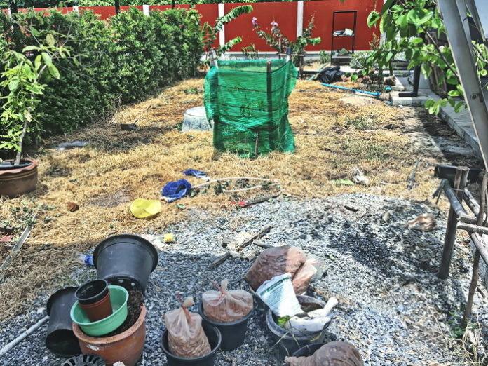 DIY จัดสวนหิน