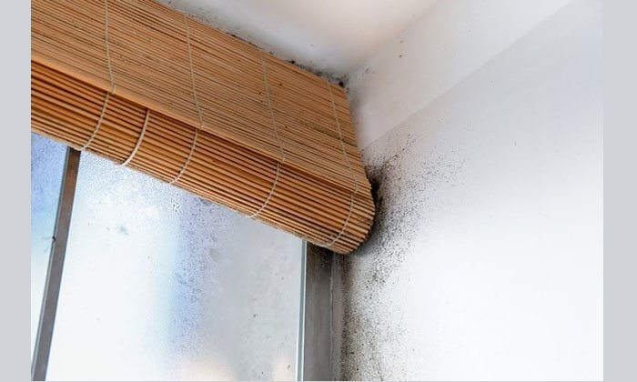 9 จุดในบ้านที่มักพบภัยอันตราย สารปนเปื้อนและแหล่งสะสมโรค