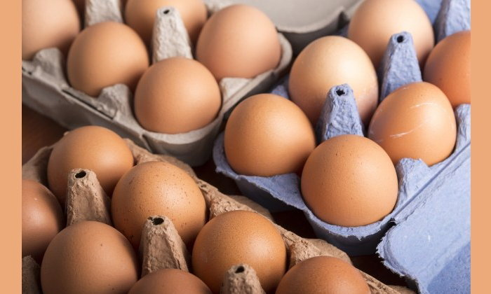 กล่องใส่ไข่กระดาษเหลือทิ้งกับวิธีการนำมาใช้ประโยชน์ที่หรูหราและคุ้มค่า