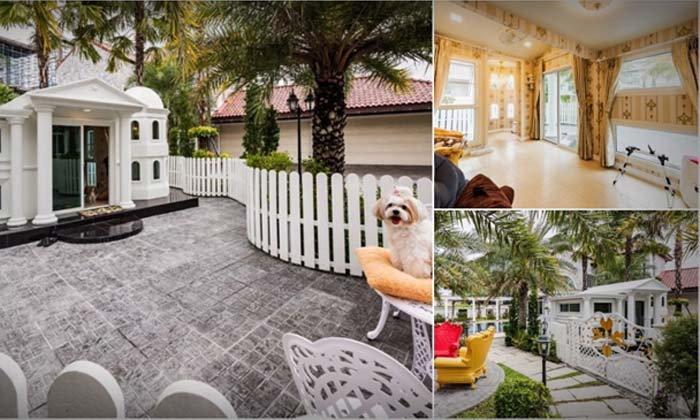 บ้านน้องหมาสไตล์โรมัน ดีไซน์สวยคลาสสิก ไม่ซ้ำใคร พร้อมพื้นที่โล่งกว้างแบบจัดเต็ม เอาใจคนรักน้องหมาโดยเฉพาะ