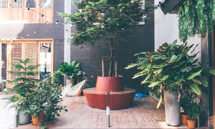 เปลี่ยนสวนหลังบ้านให้เป็นลานนั่งเล่นปีใหม่