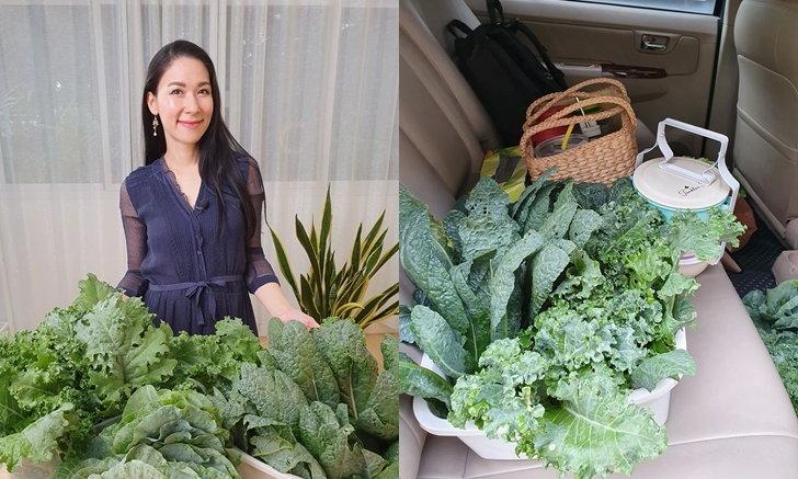"""น่ารักและดี """"หนูดี วนิษา"""" แนะนำวิธีปลูกผักเคล ราชินีผักใบเขียว มีประโยชน์สุดๆ"""