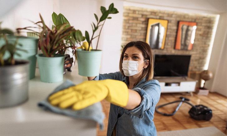 เสกบ้านสะอาด ปลอดเชื้อแบบมือโปร! ด้วย 5 เทคนิคระดับเซียน
