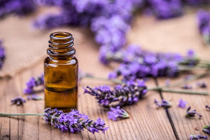 How to use lavender Home decoration to enhance feng shui energy AHR0cHM6Ly9zLmlzYW5vb2suY29tL2htLzAvdWQvNS8yNzM0MS9pc3RvY2stNTg1MDQ4MzI2LmpwZw==