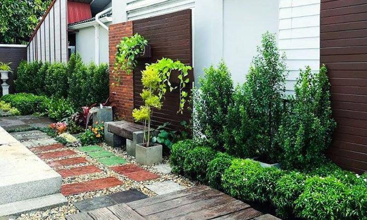 จัดสวนแบบไร้หญ้า เน้นสีเขียวจากพุ่มไม้ พร้อมปูทางเดินพื้นโดยรอบด้วยกรวดหินสวยงาม