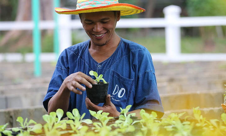 จากสนามโปโลสู่ DO Farm แปลงผัก นาข้าวบนผืนทราย ของดุสิตธานี หัวหิน