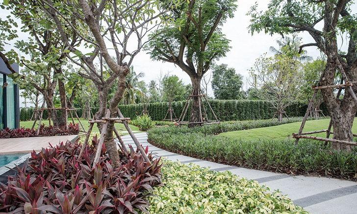 รวมไอเดียจัดสวนสวยหลากดีไซน์ ไม่ได้มีแค่สนามหญ้า