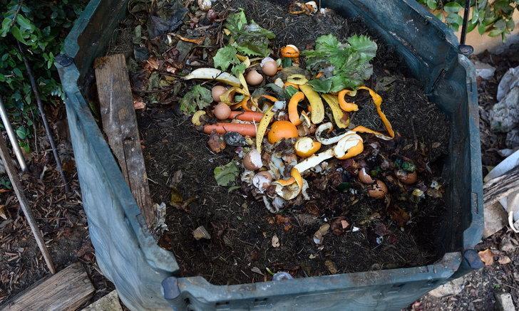 9 ขั้นตอนใช้ถังหมักเศษอาหาร ประโยชน์จากของเหลือทิ้งในครัวเรือน