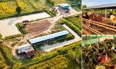 """หนุ่มโชว์ผลงาน """"โคก-หนอง-นา โมเดล"""" ออกแบบขุดดินทำเกษตรผสมผสานบนที่ดิน 6 ไร่"""