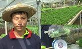 หนุ่มวัย 29 หันหลังจากงานประจำ ปลูกผักไฮโดรโปนิกส์สร้างรายได้เดือนละ 5 หมื่น