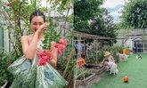 """เปิดสวนหลังบ้าน """"แพนเค้ก"""" ปลูกผักไว้ทานเอง พร้อมแปลงข้าวสาลี"""