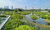 สำรวจสวนป่าเบญจกิติจากโรงงานยาสูบ สู่สวนป่าใจกลางกรุง