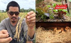"""""""โอ๋ P2WARSHIP"""" ศิลปินอินดี้ เปลี่ยนสนามฟุตบอลย่านลาดพร้าวเป็น """"ฮิพอินทรีย์"""" ฟาร์มแห่งสุข"""
