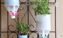 DIY Tree Bottle เปลี่ยนแกลลอนเก่า เป็นกระถางต้นไม้