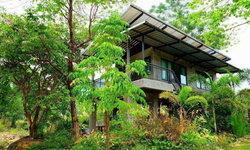 """""""บ้านสวนตวงรัก"""" บ้านสองชั้นแนวลอฟท์ งดงามด้วยงานปูนเปลือย โปร่งสบาย ด้วยสวนป่า และลำธารใส"""