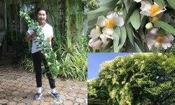 """""""บ้านไก่ วรายุฑ"""" ปลูกดอกไม้ประดับบ้านหลายพันธุ์ บานสะพรั่งจนนึกว่าสวนดอกไม้"""