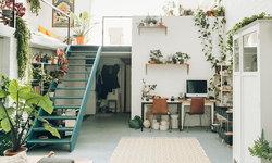 ไอเดียจัดสวนในบ้านด้วยไม้กระถาง เพิ่มความสดชื่นให้ทุกมุมบ้าน