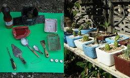 แชร์ไอเดีย DIY กระถางต้นไม้จากกล่องข้าวพลาสติกขั้นตอนทำง่ายใช้อุปกรณ์น้อยชิ้น