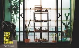 """เปลี่ยนระเบียงว่างเปล่าให้กลายเป็น """"ห้องกระจกเลี้ยงแคคตัส"""" สวนเล็กๆ ชุ่มชื่นหัวใจ"""