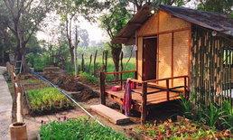 เปลี่ยนสวนผสมผสานเป็น 'บ้านปันสุขเพชรบุรีรมย์' โฮมสเตย์ที่ให้เรากางมุ้งนอน อาบน้ำโอ่ง