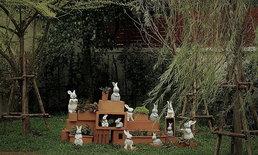 ไอเดียแต่งสวนสวยบ้านกระต่ายใต้ต้นหลิว ราคาไม่เจ็บ ไม่แรงเว่อร์