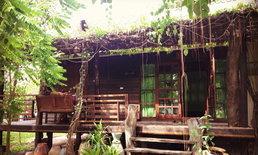 """ไอเดียแบบบ้านไม้ชั้นเดียวยกพื้น ปกคลุมไปด้วยต้นม่านบาหลี """"เรือนบาหลี"""""""